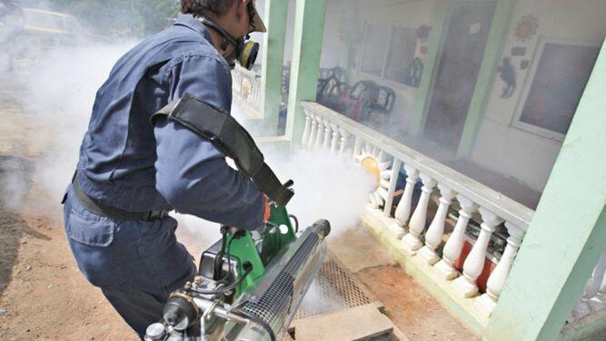 Cierran IPHE en La Chorrera debido a problemas con ratas