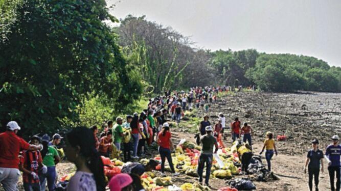 'Alarma' tras jornada de limpieza de playas