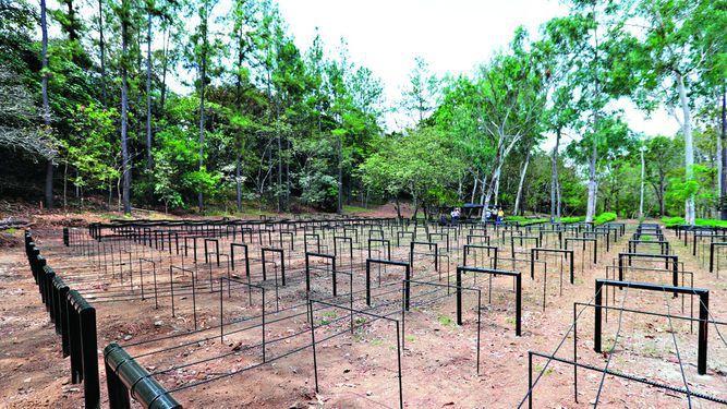 Esperanza germina en San Roquito