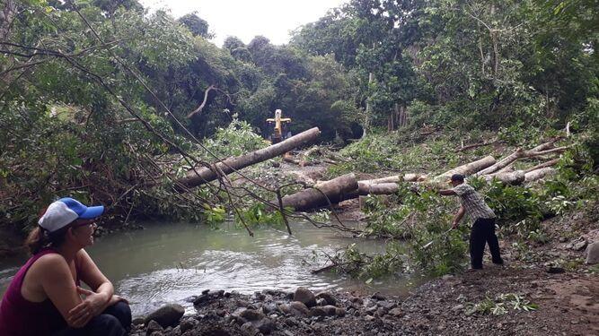 Erosión afecta cauce de la quebrada La Corocita, en Los Santos