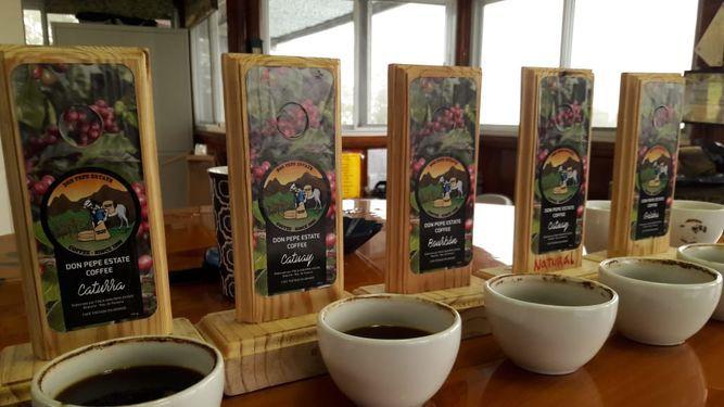 El circuito del café ya es un hecho en Chiriquí
