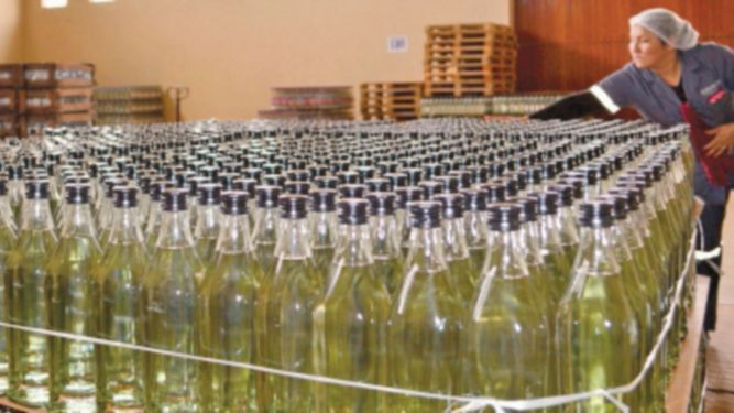 Los vinos de altura de Bolivia están a la conquista del mercado mundial