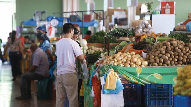 Merca Panamá pasa periodo de prueba