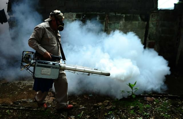 El virus chikungunya llegó a América Latina para quedarse, según experto