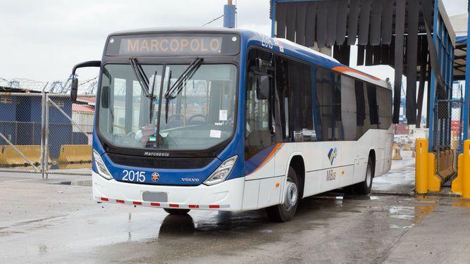 Mi Bus: Llegaron los últimos buses que completarán la flota de 203 vehículos