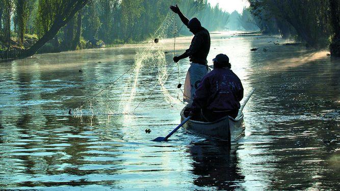 México prohíbe técnica de pesca