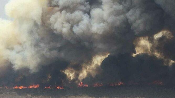Dos panameños viajan a Bolivia para combatir incendios forestales