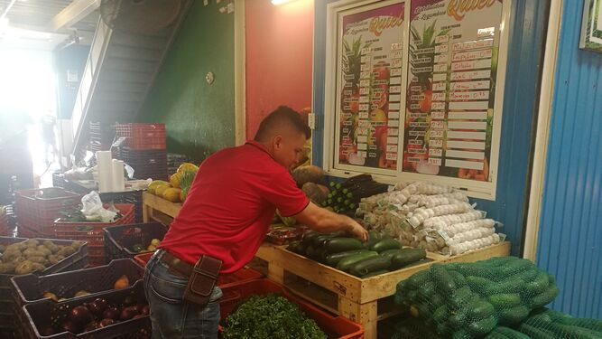 Banco de Alimentos Panamá recibe 50,600 libras de productos agrícolas