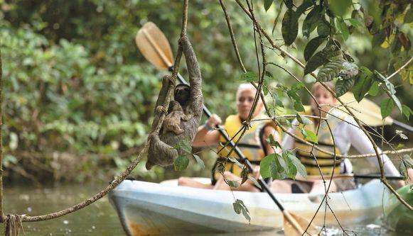 Turismo en aguas del Canal genera conflicto