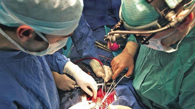 Llaman a la población a donar órganos