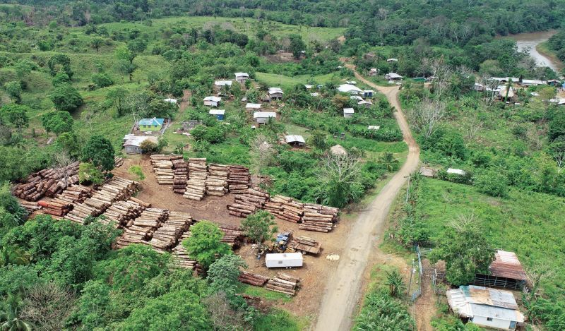 Exigen mayor vigilancia en las selvas de la provincia de Darién