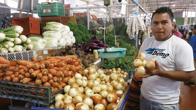 Cambio climático impacta en productos agrícolas