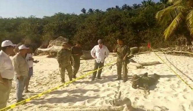 Expertos del Consejo de Seguridad hallan otra bomba en isla Iguana