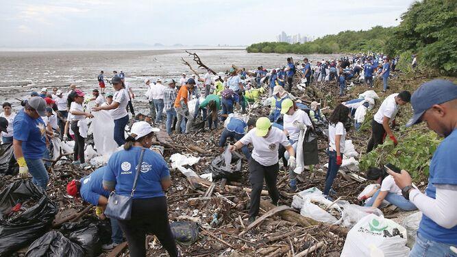 Limpieza anual de playas
