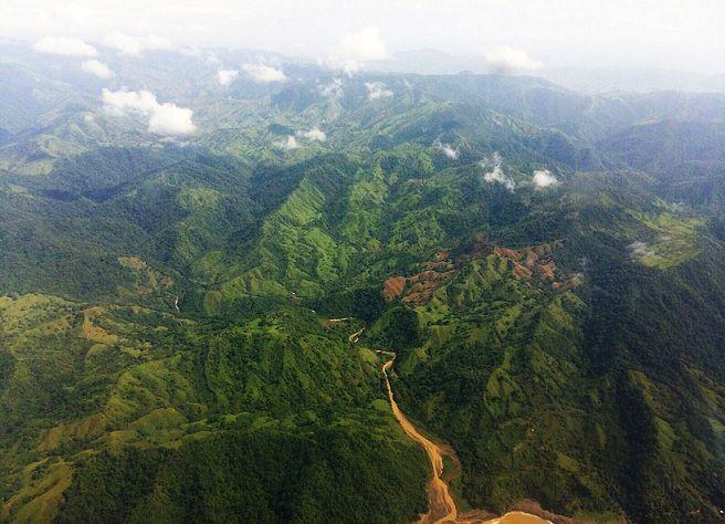 Encuentran especies endémicas en el Parque Nacional Cerro Hoya