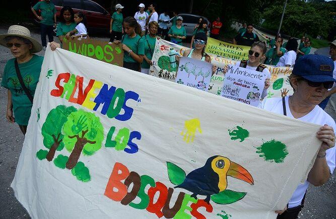 Residentes de Clayton continúan su lucha a favor de los bosques