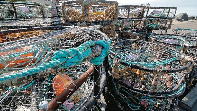Pesca artesanal de centolla persiste en el 'fin del mundo'