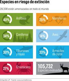 La lista más 'roja' de especies amenazadas