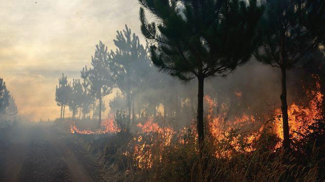 El clima extremo provoca desastres en Chile