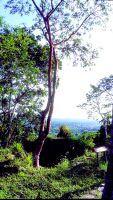 Pinar del Río: ecoturismo en Cuba