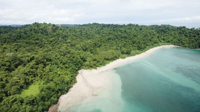 Sala Tercera suspende acuerdo que pasaba a Miambiente uso de Fondo Coiba