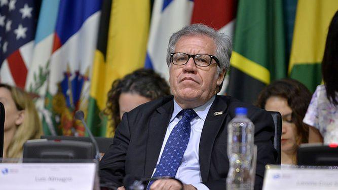 Luis Almagro: consulta opositora puede 'detener el colapso' en  Venezuela
