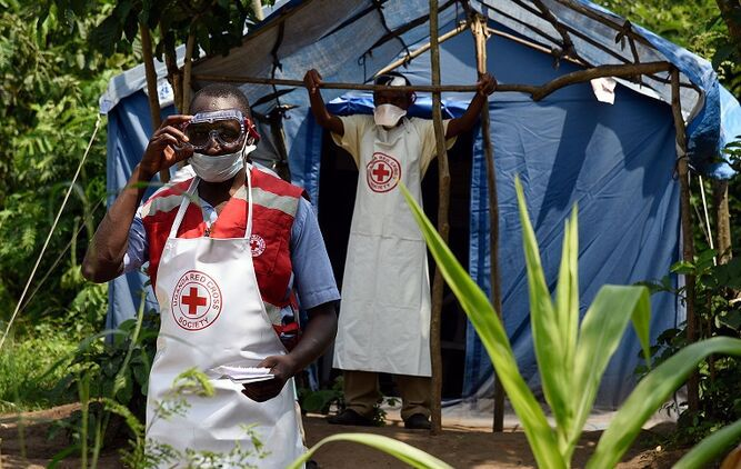 OMS no considera el brote de ébola una 'emergencia mundial'