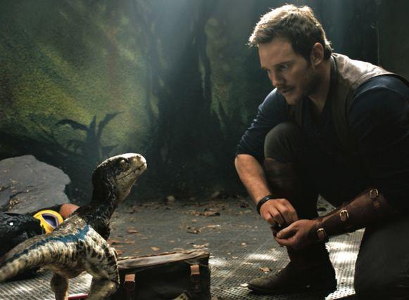 'Jurassic World' y los derechos de los animales