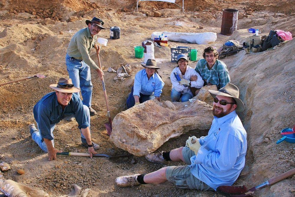 El dinosaurio más grande de Australia es una especie nueva