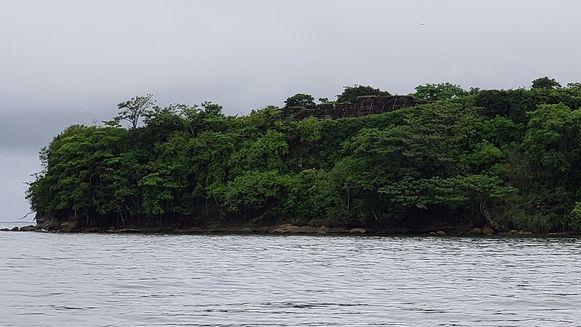 Navegando el río de los Lagartos