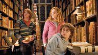Regreso a Hogwarts con el nuevo filme de 'Animales fantásticos'