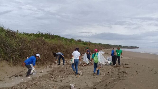 En operativo de limpieza, recolectan plástico, vidrio y llantas en la playa Bella Vista