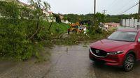 Fuertes lluvias y vientos causan caída de árboles y voladura de techo en la Cancillería