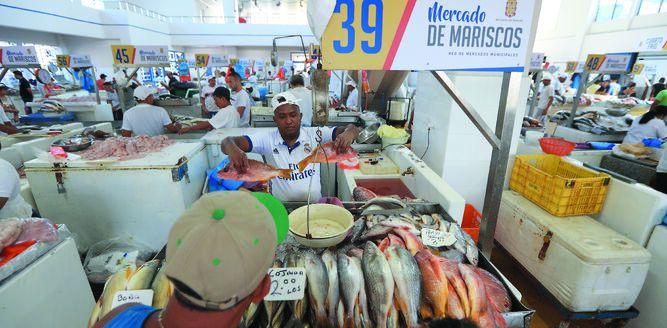 El buen pescado panameño se comercializa afuera