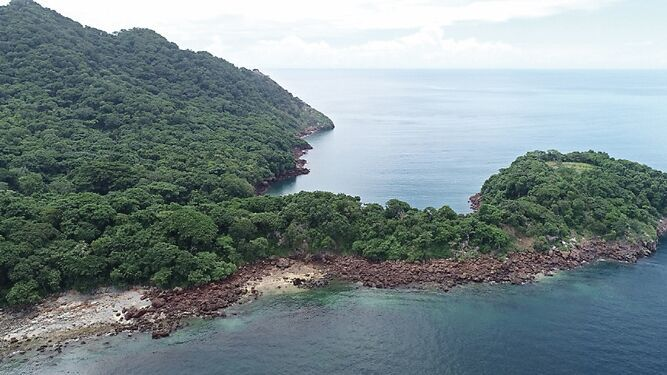 Contraloría no refrenda contrato para petrolera en isla Boná