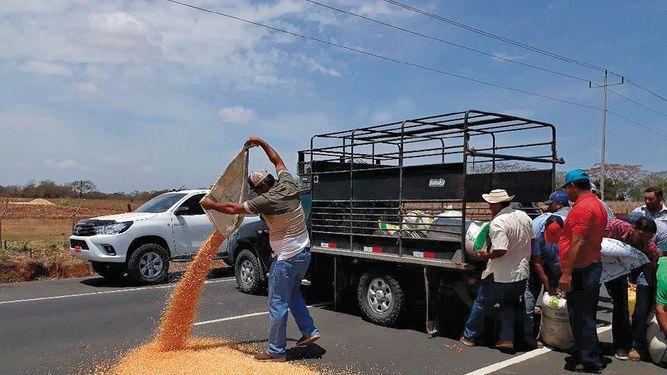Productores exigen compra de maíz
