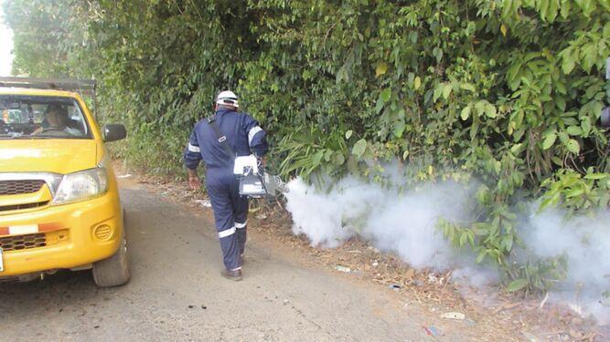 Tres muertes por dengue alertan al Ministerio de Salud