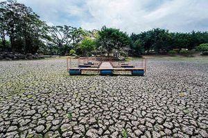 Lagos de la capital costarricense  sufren por falta de lluvias