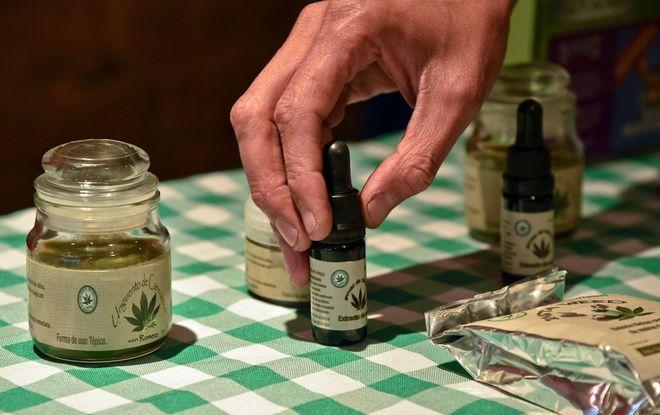¿Puede el cannabis medicinal curar a la economía panameña?
