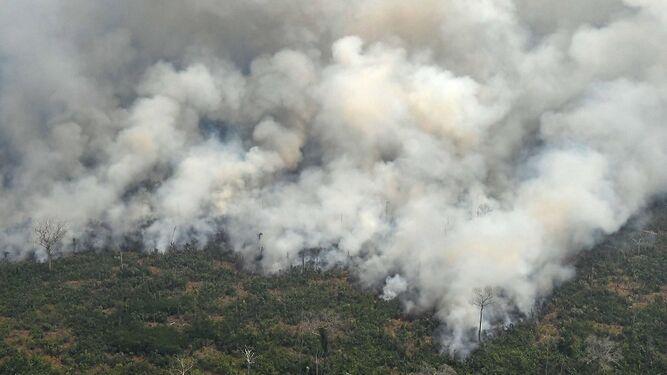 G7 acuerda ayudar a países afectados por incendios en la Amazonía
