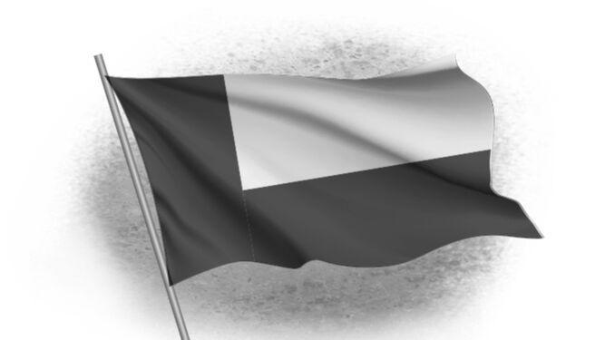 La bandera panameñista