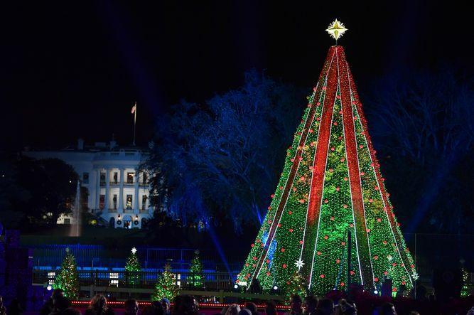 Trump enciende las luces del Árbol Nacional de Navidad