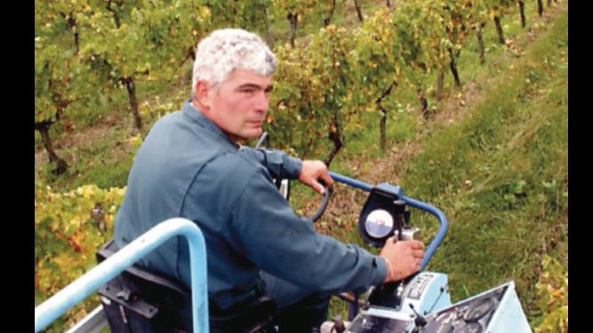 Viticultores de Francia estiman perdidas por $335 millones