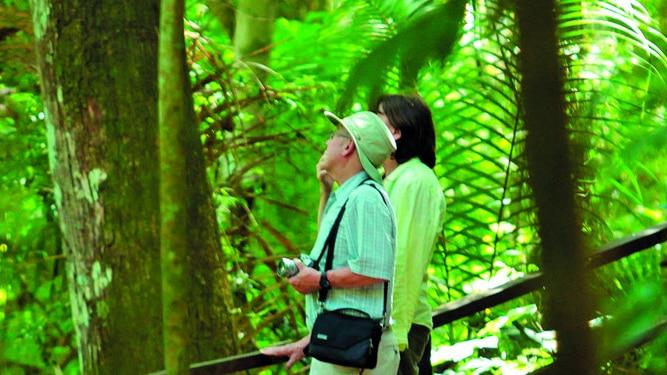 Turismo 'verde' en la ciudad de Panamá