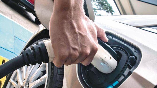 Mercado de automóviles eléctricos no despega
