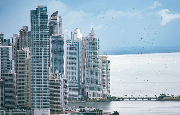 Noviembre de la patria y de aves migratorias