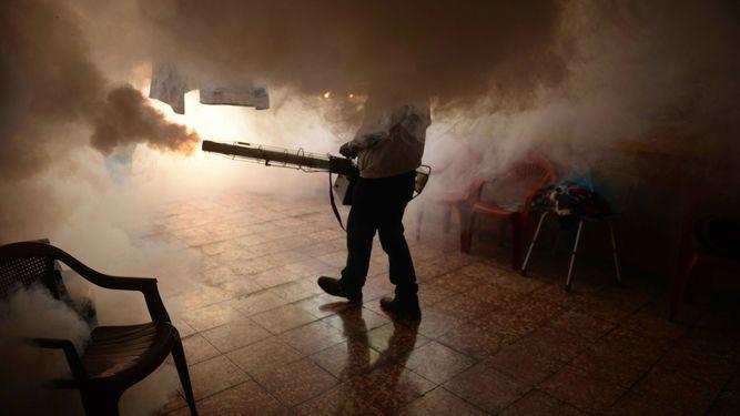 Minsa reporta menos casos de virus zika en el país