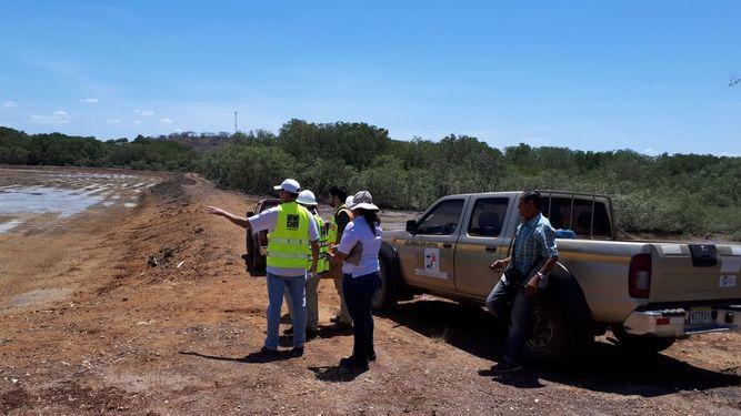 Aún no se sanciona al responsable de talar 11 hectáreas de manglares en Los Santos