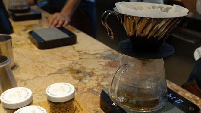 Nuevo récord: venden un kilo de café de Panamá en 10 mil  dólares