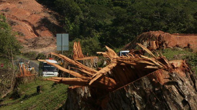 Panamá y su crisis ambiental